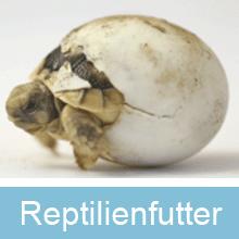 Reptilienfutter